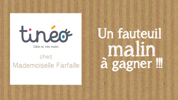 Concours blog Tineo