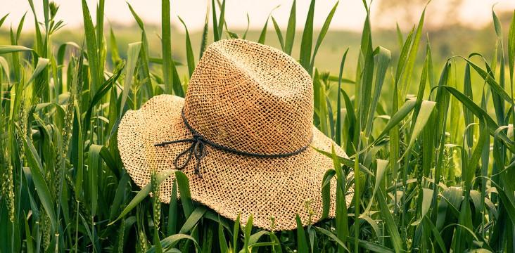 séléction chapeaux été