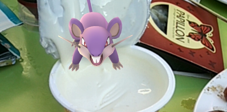 Pokemon dans la cancoillotte