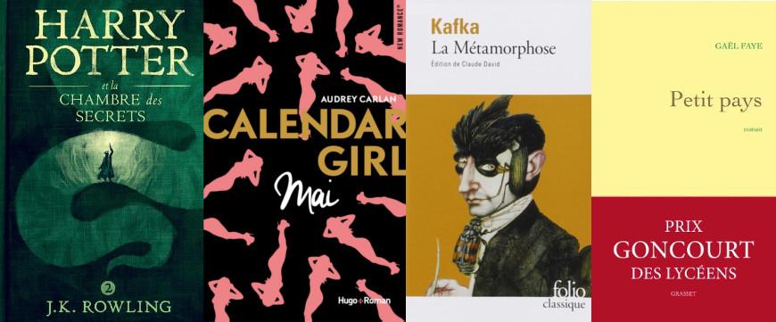 Mes derni res lectures 14 mademoiselle farfalle - Fiche de lecture harry potter et la chambre des secrets ...