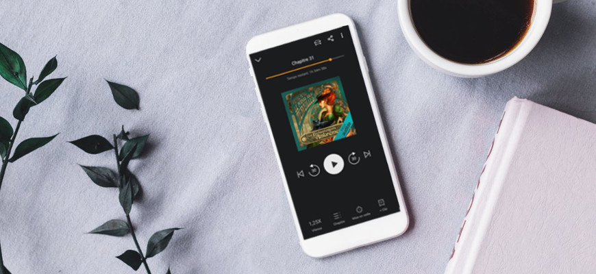 Livre audio fantasy