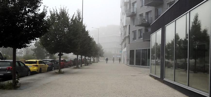 brouillard Lille